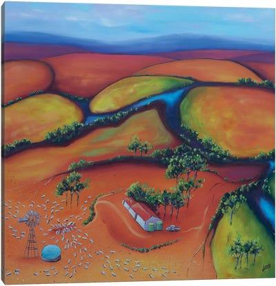Flinders, After The Rain Canvas Art Print