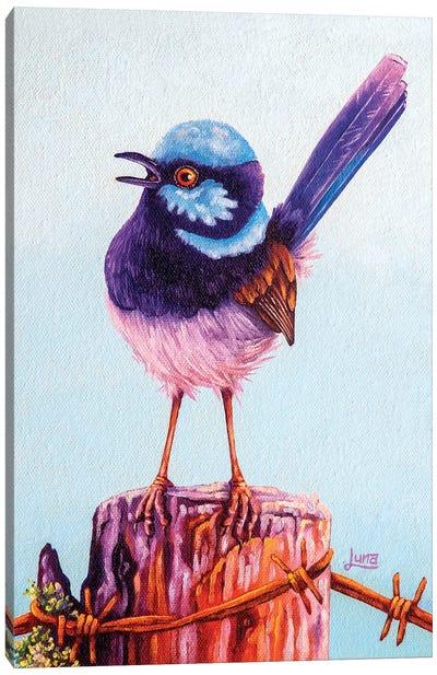Aussie Post Canvas Art Print