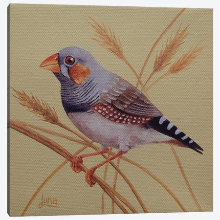 Wheatie Canvas Print #LVE196} by Luna Vermeulen Art Print