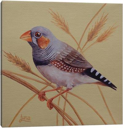 Wheatie Canvas Art Print