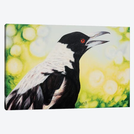 Early Bird Canvas Print #LVE24} by Luna Vermeulen Canvas Art Print