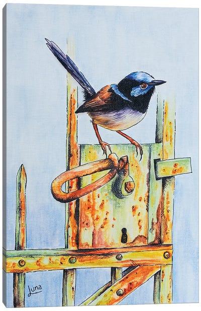 Gatecrasher Canvas Art Print