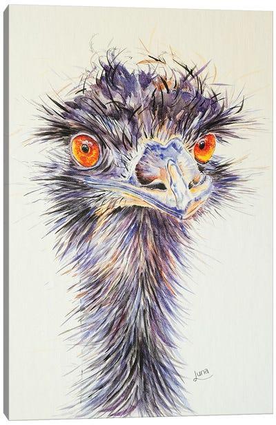 Beaky Canvas Art Print