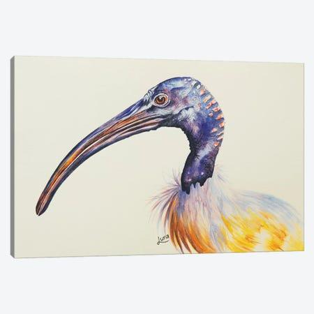 Mr Personality Canvas Print #LVE77} by Luna Vermeulen Canvas Art