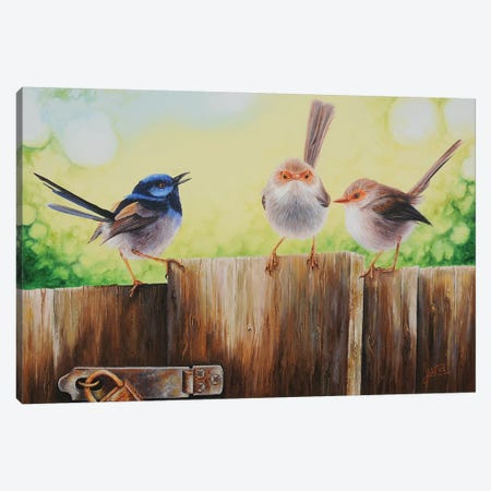 Neighbourhood Gossip Canvas Print #LVE79} by Luna Vermeulen Canvas Art Print