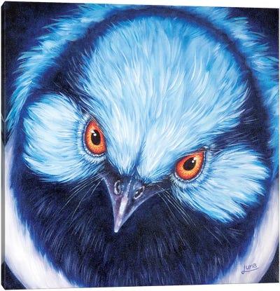 Blue Steel Canvas Art Print