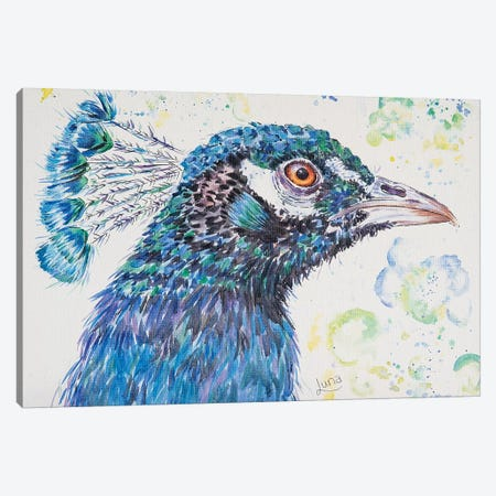 P Is For Peacock Canvas Print #LVE81} by Luna Vermeulen Canvas Art