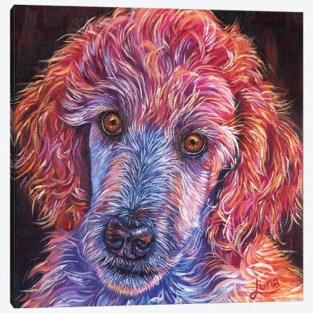 Puppy Love Canvas Print #LVE90} by Luna Vermeulen Art Print