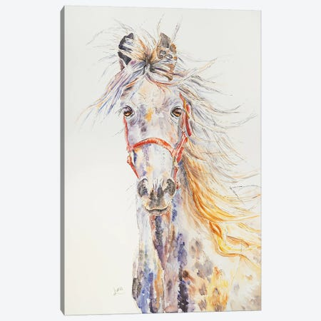 Silver Falcon Canvas Print #LVE99} by Luna Vermeulen Canvas Art Print