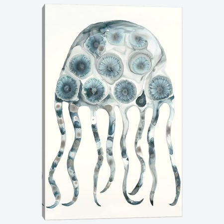 Silver Jelly Canvas Print #LVH11} by Laura Van Horne Canvas Artwork