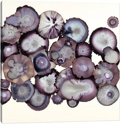 Eggplant Canvas Art Print