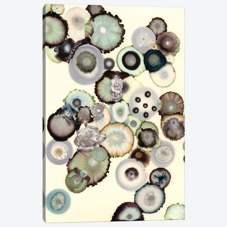 Colorblind Canvas Print #LVH33} by Laura Van Horne Canvas Wall Art