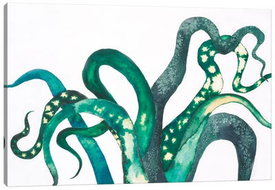 Octo Legs Canvas Art Print