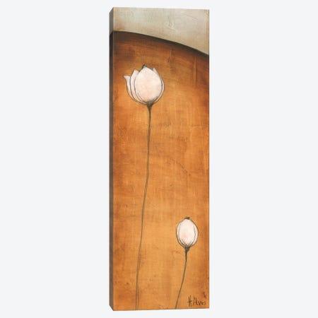 Standing Tall III Canvas Print #LVS3} by H. Alves Art Print