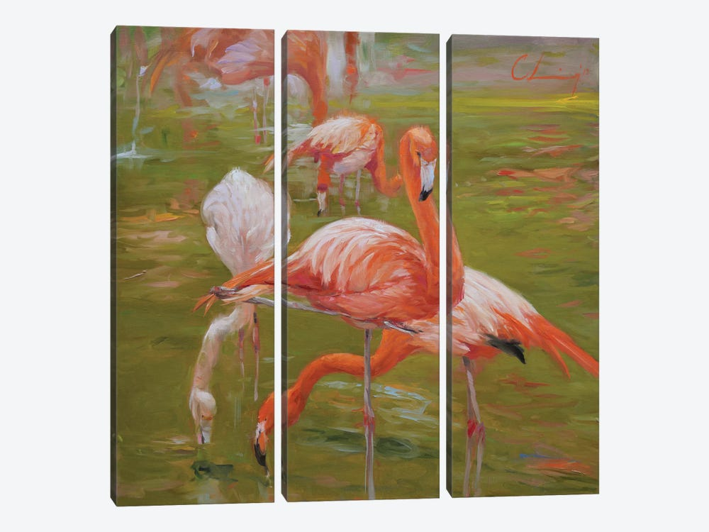 Flamingo I by Chuck Larivey 3-piece Canvas Print