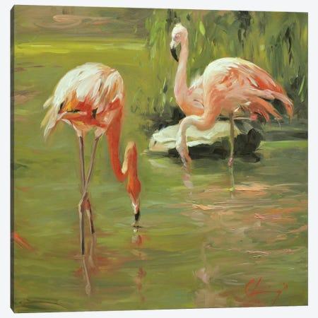 Flamingo II Canvas Print #LVY2} by Chuck Larivey Canvas Art Print