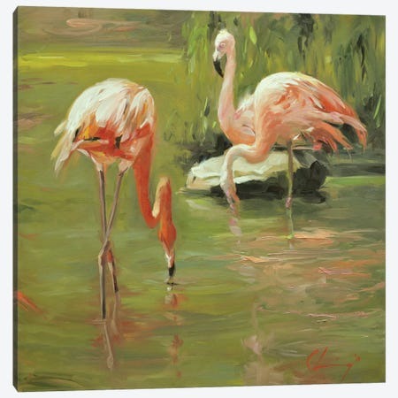 Flamingo II Canvas Print #LVY2} by Chuck Larivey Canvas Art Print