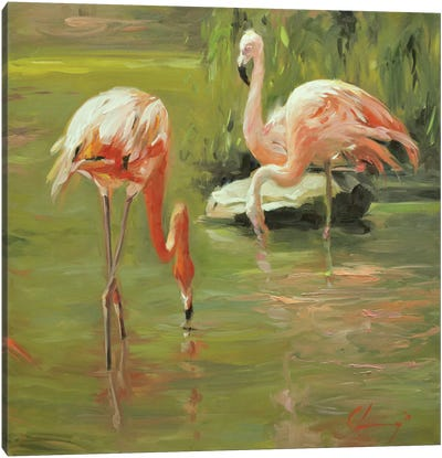 Flamingo II Canvas Art Print