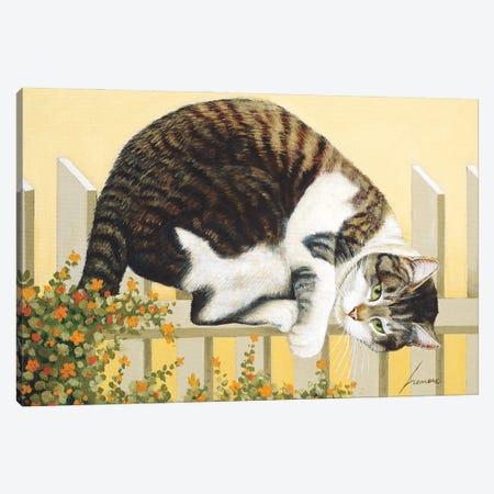 Rocky Selland Fence Canvas Print #LWE106} by Lowell Herrero Canvas Art