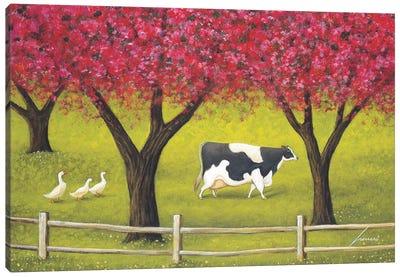 Crabapples In Bloom Canvas Art Print