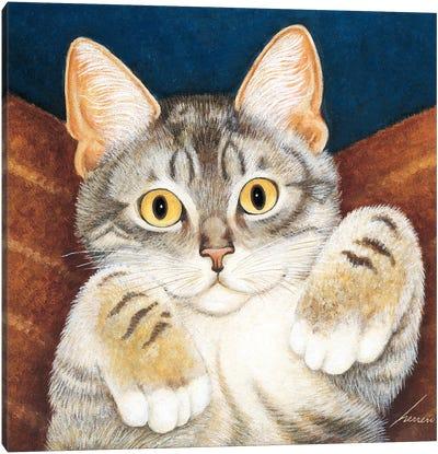 Foster Kitten Blue Canvas Art Print