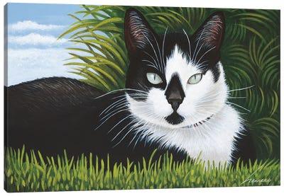 Freddy Martin Canvas Art Print