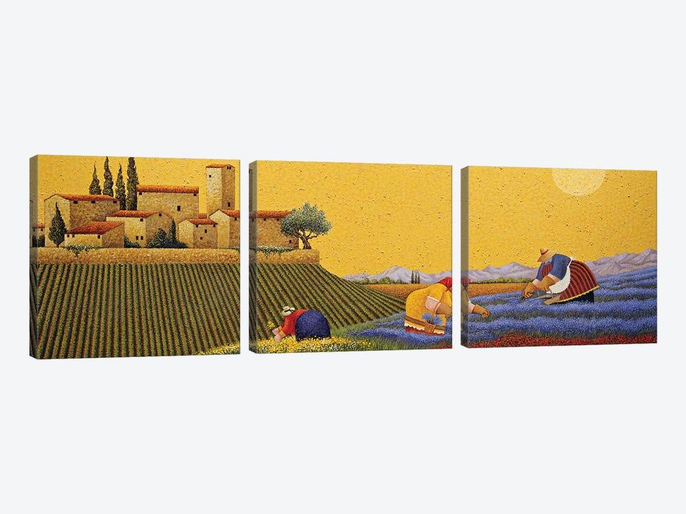 Hillside Flowers by Lowell Herrero 3-piece Canvas Art