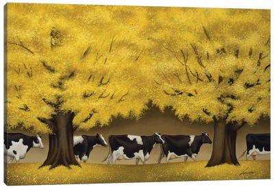 Autumn Cows Canvas Art Print