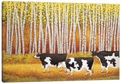 Autumn Cows Birch Trees Canvas Art Print