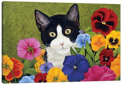 Newman Piggy Amundson Canvas Art Print