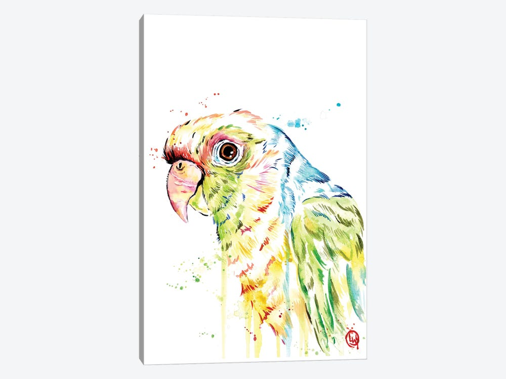 Parrot by Lisa Whitehouse 1-piece Canvas Print