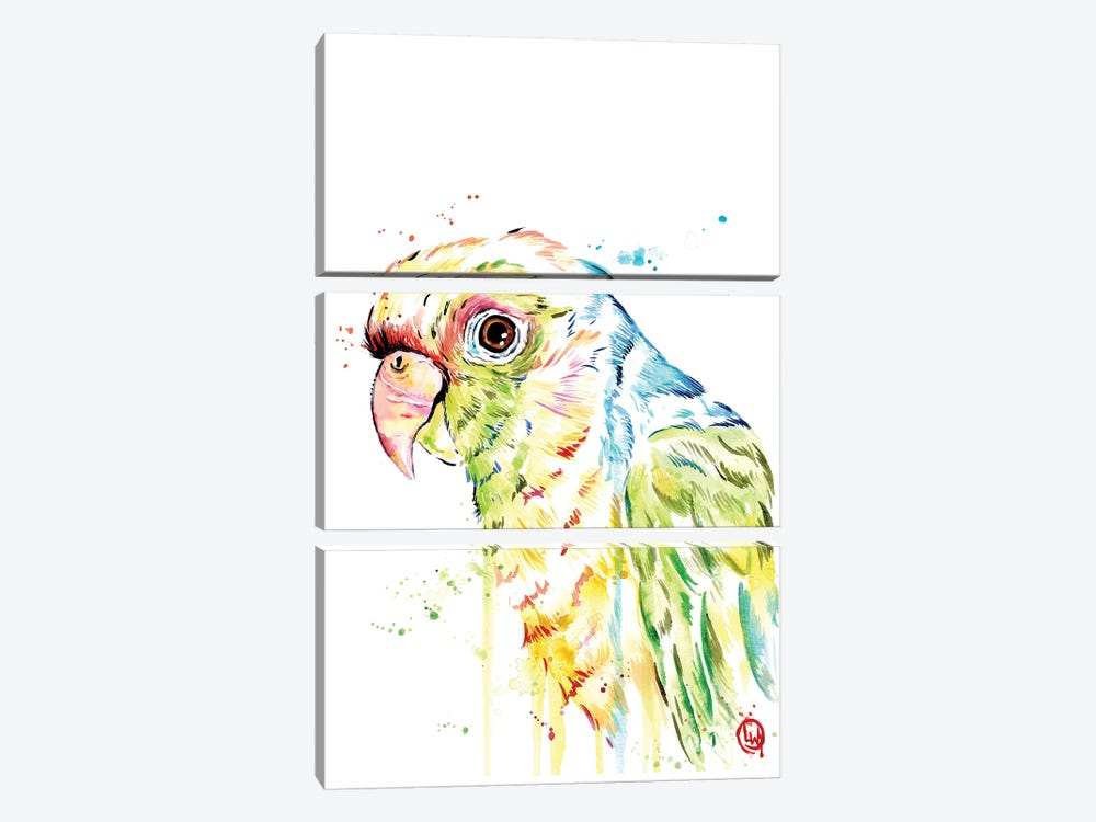 Parrot by Lisa Whitehouse 3-piece Art Print