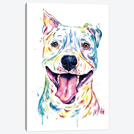 Pitbull - Full of Smiles Canvas Print #LWH108} by Lisa Whitehouse Canvas Artwork