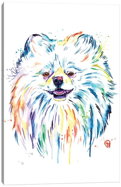 Pomeranian - Leo Canvas Art Print