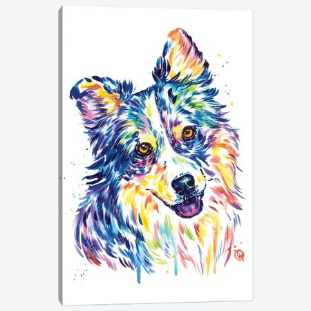 Australian Shepherd Canvas Print #LWH115} by Lisa Whitehouse Canvas Art