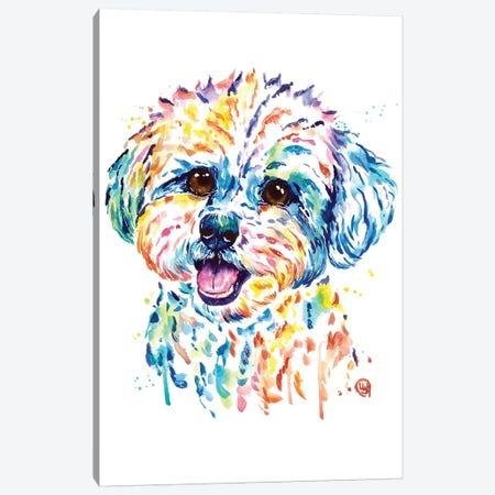 Bichon Canvas Print #LWH116} by Lisa Whitehouse Canvas Wall Art
