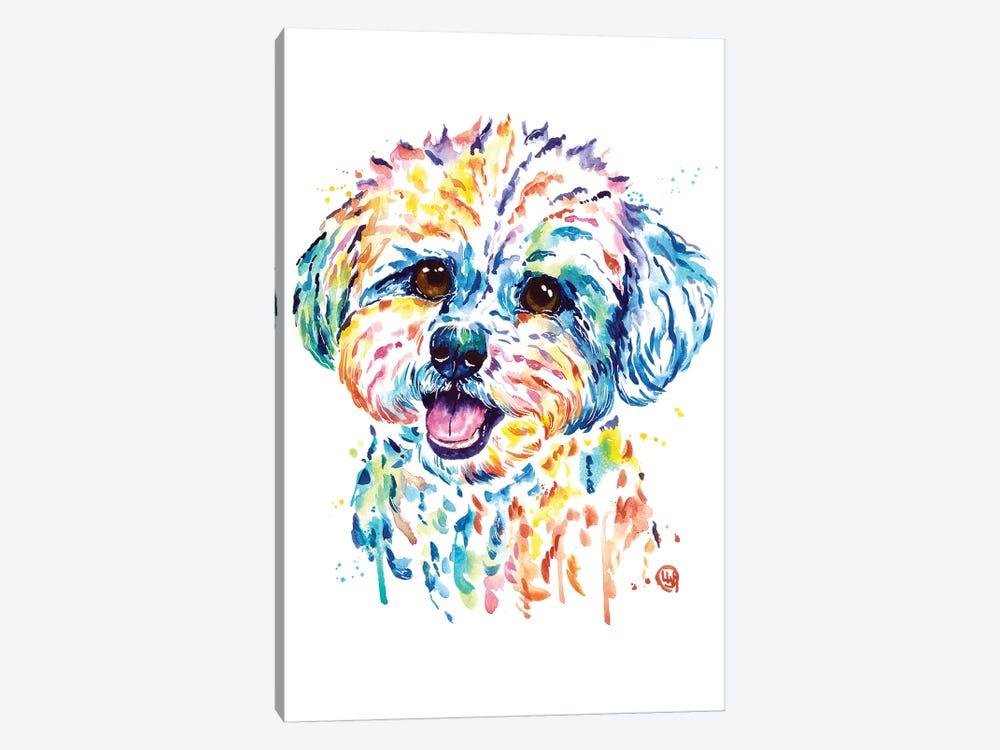 Bichon by Lisa Whitehouse 1-piece Canvas Print