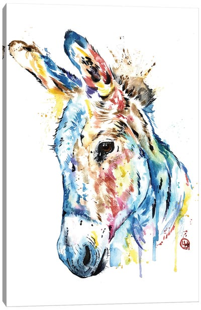 Donkey Canvas Art Print