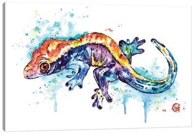Gecko Canvas Art Print