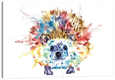 Hedgehog Canvas Art Print