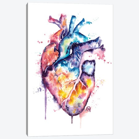 Human Heart Canvas Print #LWH128} by Lisa Whitehouse Canvas Wall Art