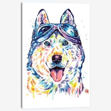 Husky Aviators Canvas Print #LWH129} by Lisa Whitehouse Canvas Wall Art