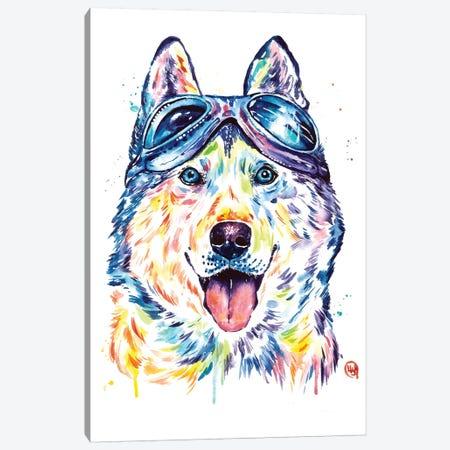 Husky Aviators Canvas Print #LWH129} by Lisa Whitehouse Canvas Wall Art