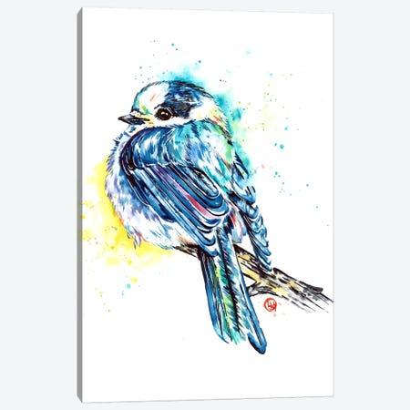 Canada Jay Canvas Print #LWH138} by Lisa Whitehouse Canvas Art Print
