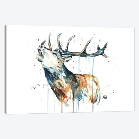 Elk Calling Canvas Print #LWH13} by Lisa Whitehouse Canvas Print