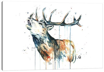 Elk Calling Canvas Art Print