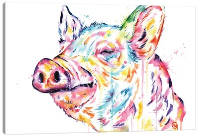 Pig - Free To Be Canvas Art Print