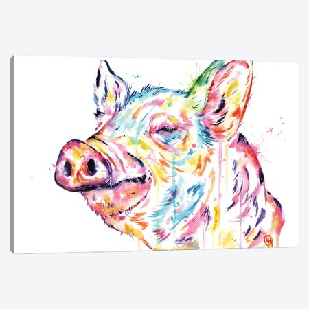 Pig - Free To Be Canvas Print #LWH146} by Lisa Whitehouse Canvas Art Print
