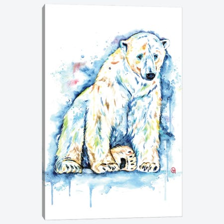 Polar Bear - Solitude Canvas Print #LWH147} by Lisa Whitehouse Art Print