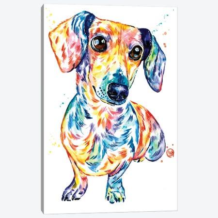 Dachshund Canvas Print #LWH152} by Lisa Whitehouse Canvas Art Print
